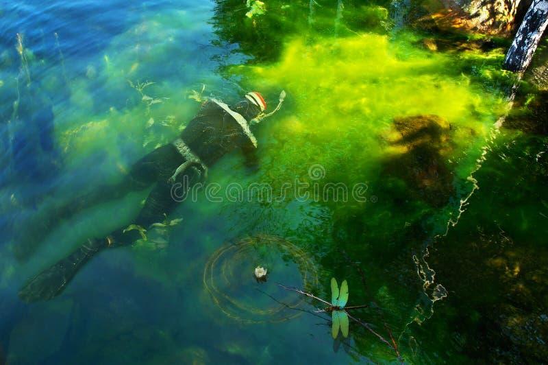 Unterwasser- Jagd auf dem ` Uvildy-` See in den Süd-Urals stockbilder