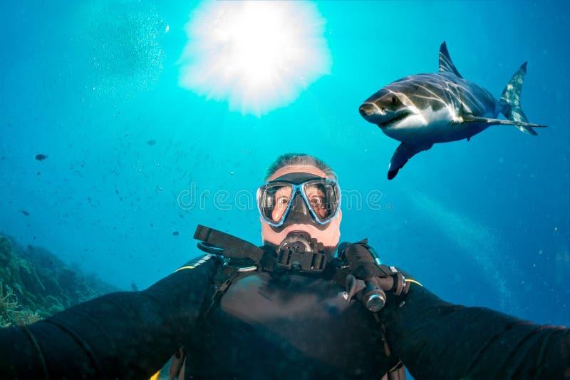 Unterwasser-selfie mit dem weißen Hai bereit anzugreifen lizenzfreie stockbilder