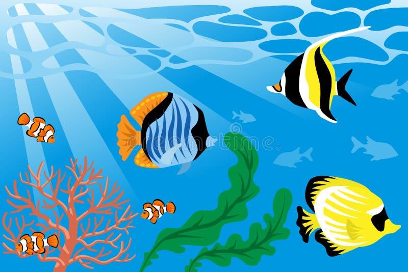 Unterwasser-, tropische Fische und Seeleben vektor abbildung
