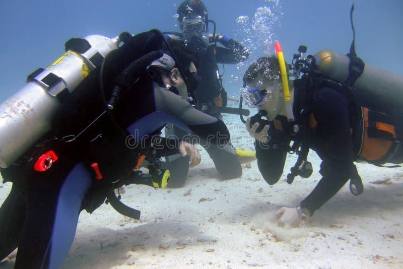Unterwasseratemgerätausbilder hält eine Prüfung an stockbilder