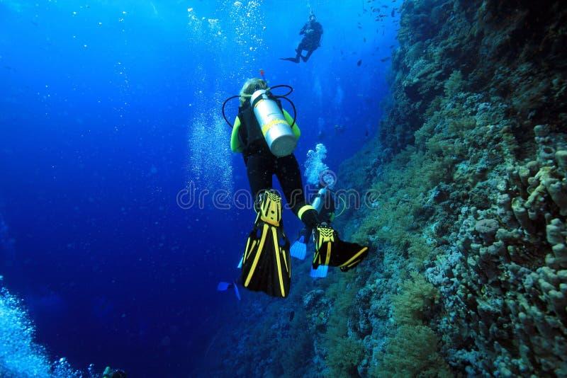 Unterwasseratemgerättaucher stockfotografie