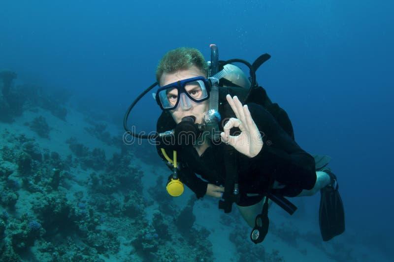 Unterwasseratemgerättaucher auf einem Sturzflug lizenzfreie stockfotografie