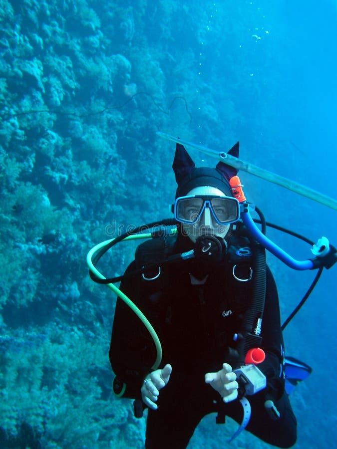Unterwasseratemgerättaucher der jungen Frau stockbild
