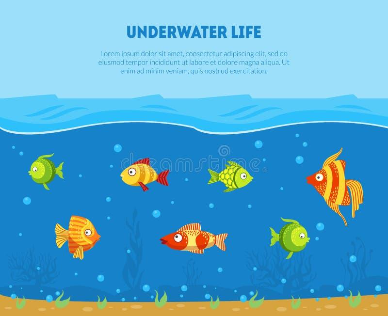 Unterwasserleben-Fahnen-Schablone mit Raum für Text und bunte tropische Fisch-Vektor-Illustration stock abbildung
