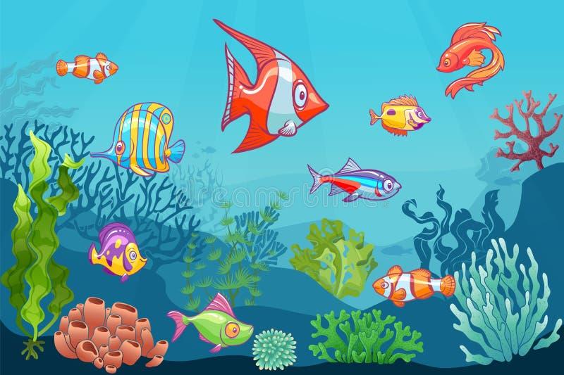 Unterwassermeerblick Karikaturwasserseewildes Leben auf unterem Vektorhintergrund Meerespflanzen-Kindersatz des Fischclowns koral lizenzfreie abbildung