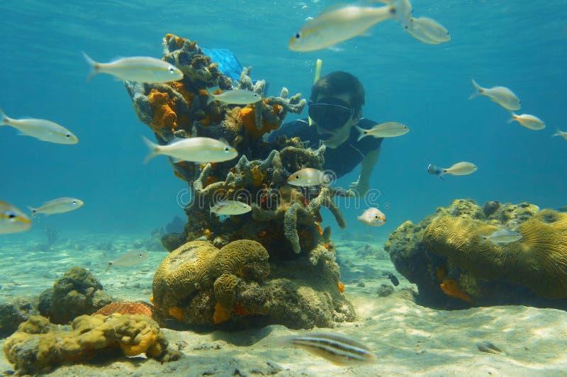 Unterwasserszene mit dem snorkeler, welches das Seeleben schaut lizenzfreie stockbilder