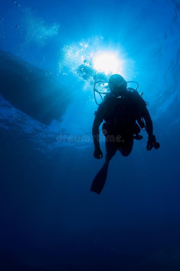 Unterwassertaucher im Mittelmeer stockfotografie
