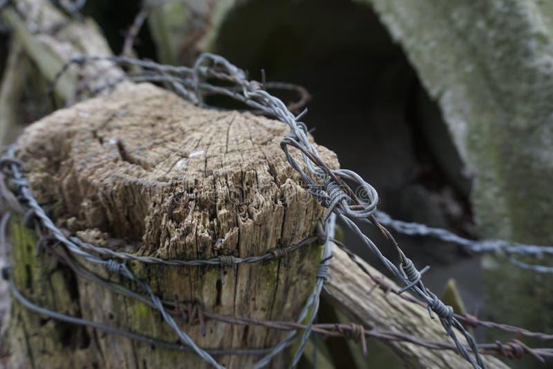 Untidy колючая проволока на столбе загородки стоковое фото