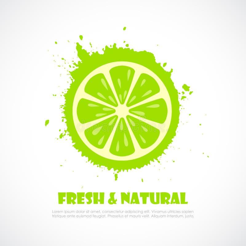 Lime splash icon royalty free illustration