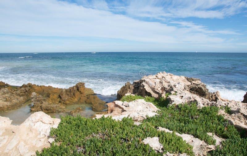 Untouched Coast: Penguin Island royalty free stock photos