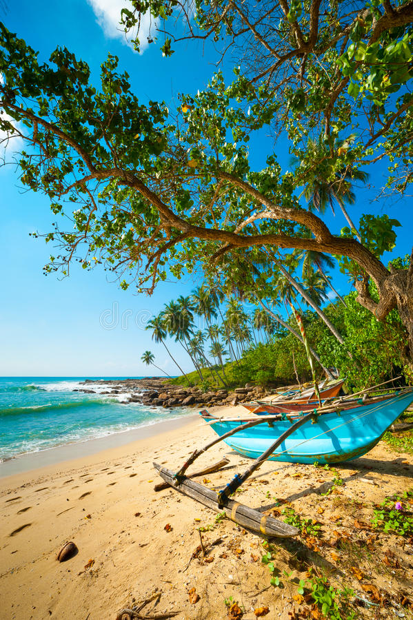 Download Untouched tropical beach stock photo. Image of boat, island - 28336276