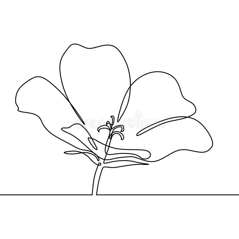 Ununterbrochenes Federzeichnung Blumen-Minimalismusentwurfs der Blüte des steigenden vektor abbildung