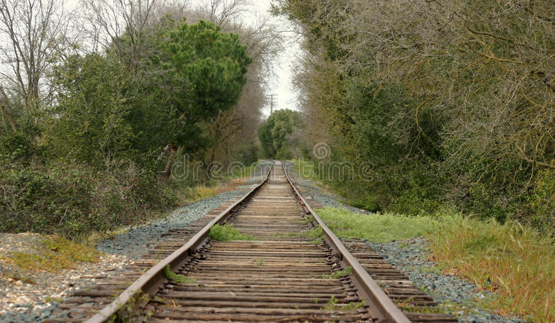 Unused railroad tracks. royalty free stock photography