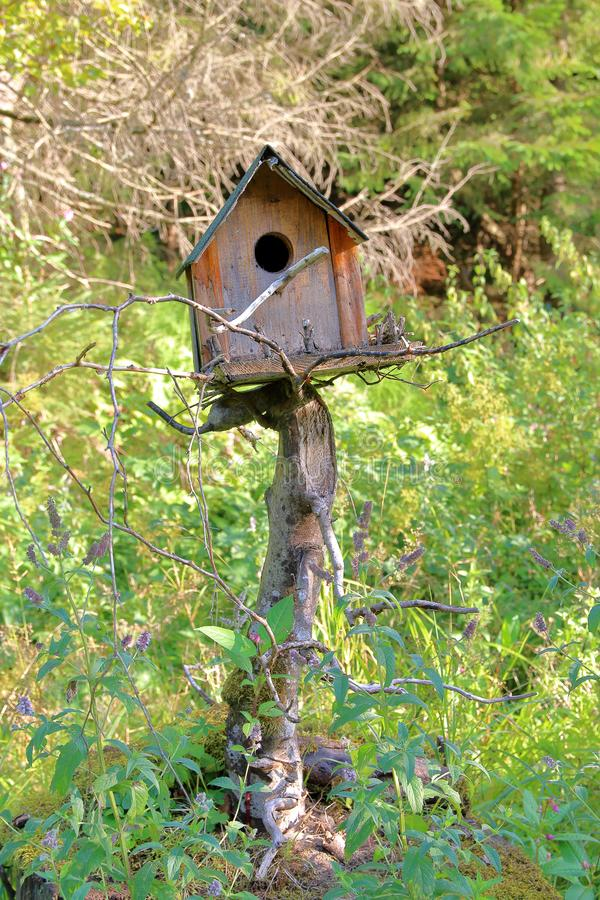An unusual bird house. stock images