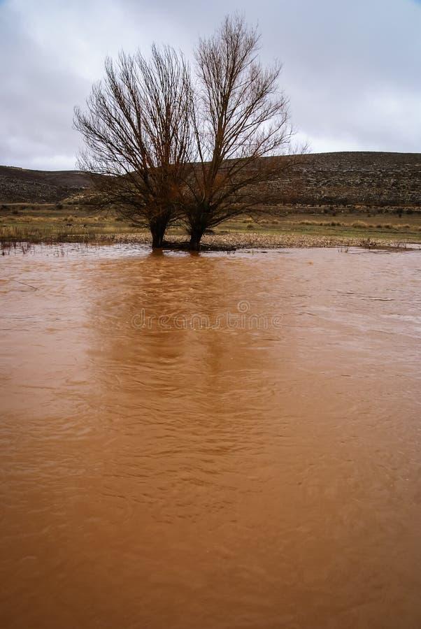 Unusual orange color of the water in the river. Pueblos rojos, Castilla y Leon, Spain royalty free stock photography