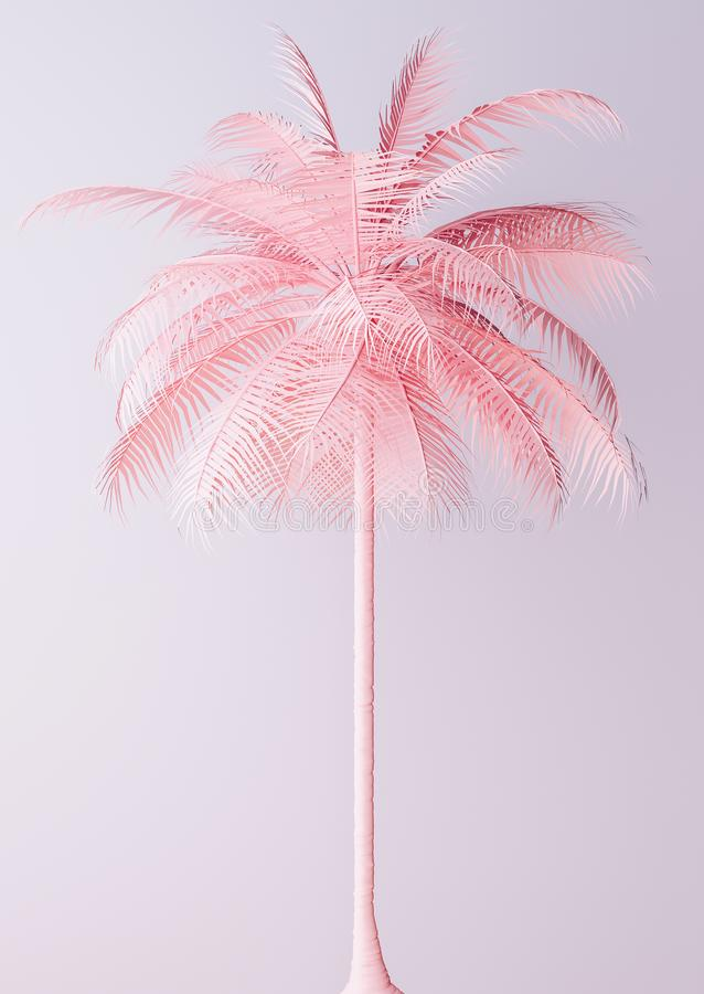 Free Unusual Pastel Pink Palm Backgroud Stock Photography - 113790062