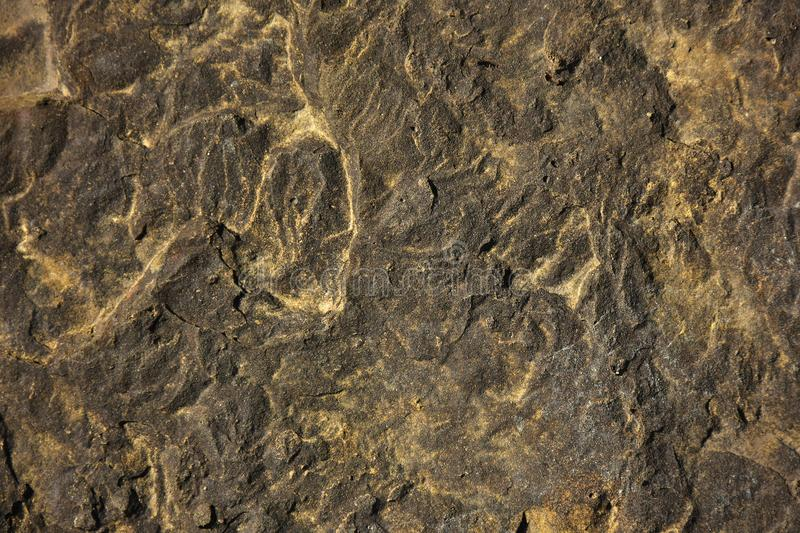 Unusual Rock Formation Texture. An abstract image of unusual rock texture with gold speckles royalty free stock photo