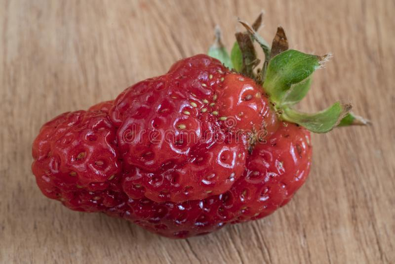 Unusual shaped strawberry on a wooden table stock photography