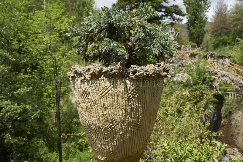 An unusual vase with a plant in the gardens of Artigas stock image