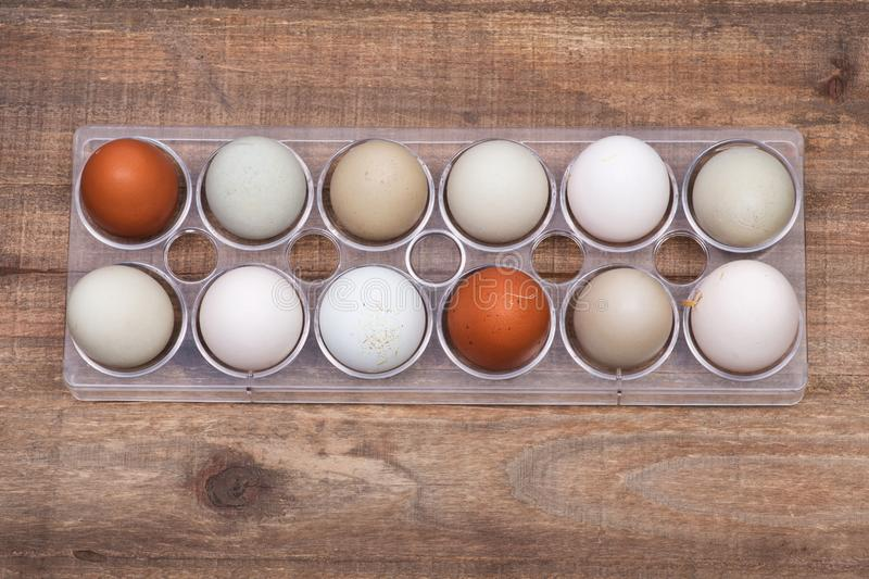 Unwashed fresh organic gmo and soy free pasture raised chicken eggs warm cozy winter gloves. Unwashed fresh organic gmo and soy free pasture raised chicken eggs stock image