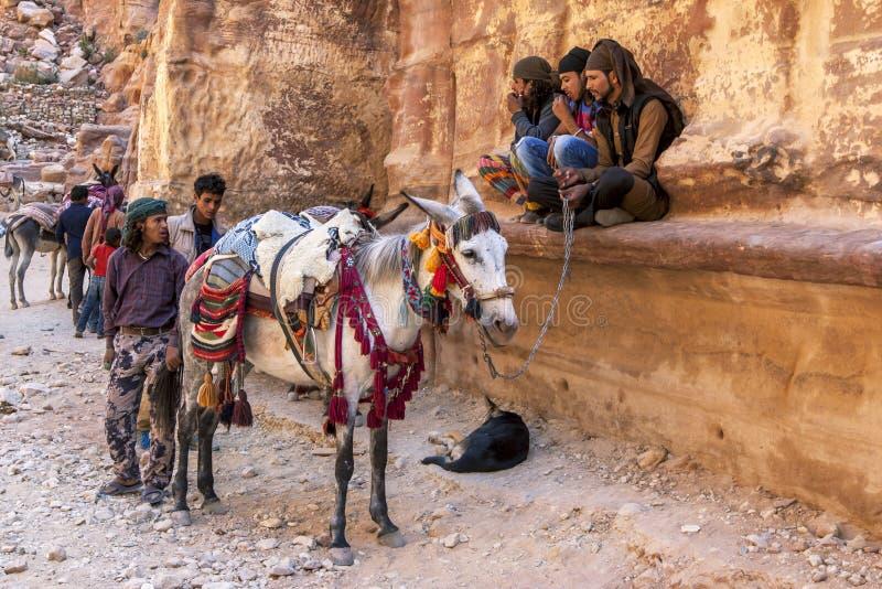 Uomini beduini con i loro cavalli ed asini al Ministero del Tesoro nel PETRA, Giordania fotografia stock