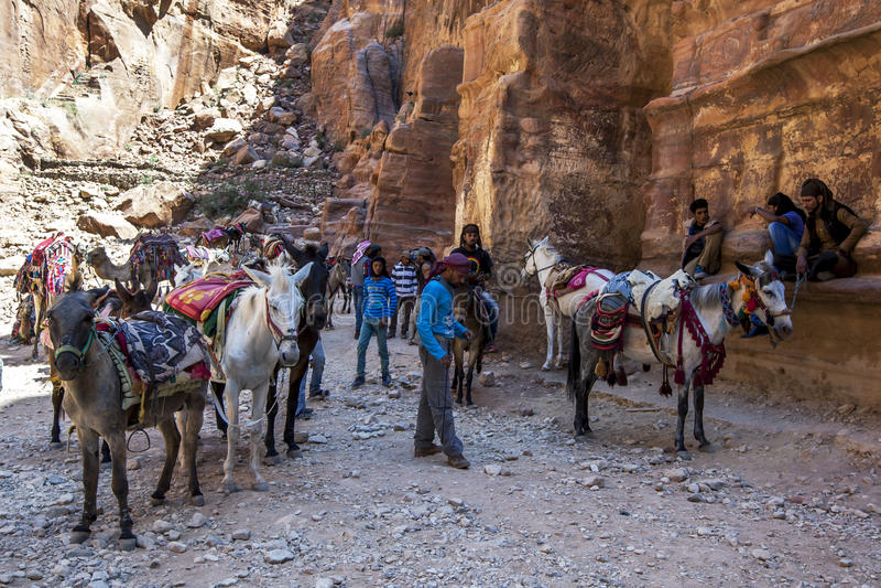 Uomini beduini con i loro cavalli ed asini al Ministero del Tesoro nel PETRA, Giordania fotografie stock