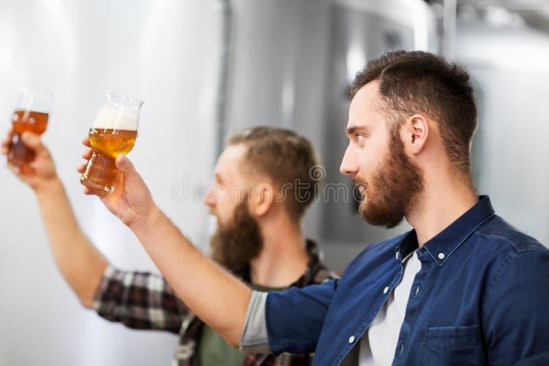 Uomini che bevono e che provano la birra del mestiere alla fabbrica di birra immagini stock