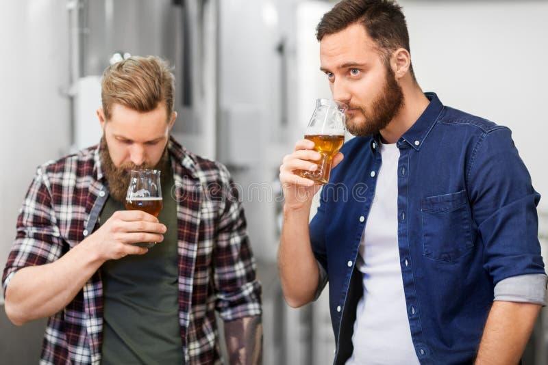 Uomini che bevono e che provano la birra del mestiere alla fabbrica di birra immagini stock libere da diritti