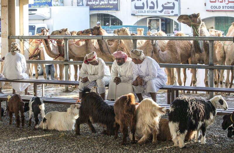Uomini che comprano e che vendono le capre ad un mercato fotografia stock