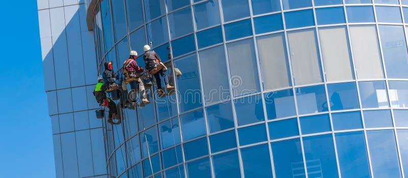 Uomini che puliscono costruzione di vetro palazzo multipiano, alpinismo industriale fotografie stock libere da diritti
