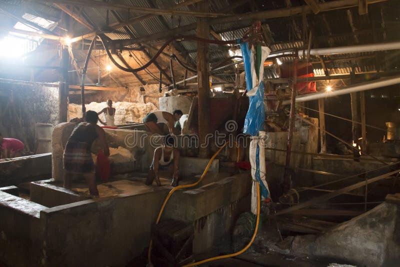Uomini che puliscono sale in una fabbrica a Chittagong, Bangladesh immagine stock libera da diritti