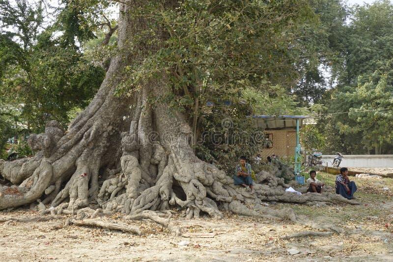Uomini del Myanmar fotografia stock
