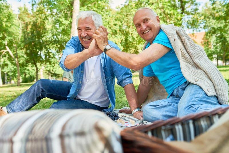 Uomini senior che godono del gioco del lotto in parco immagini stock