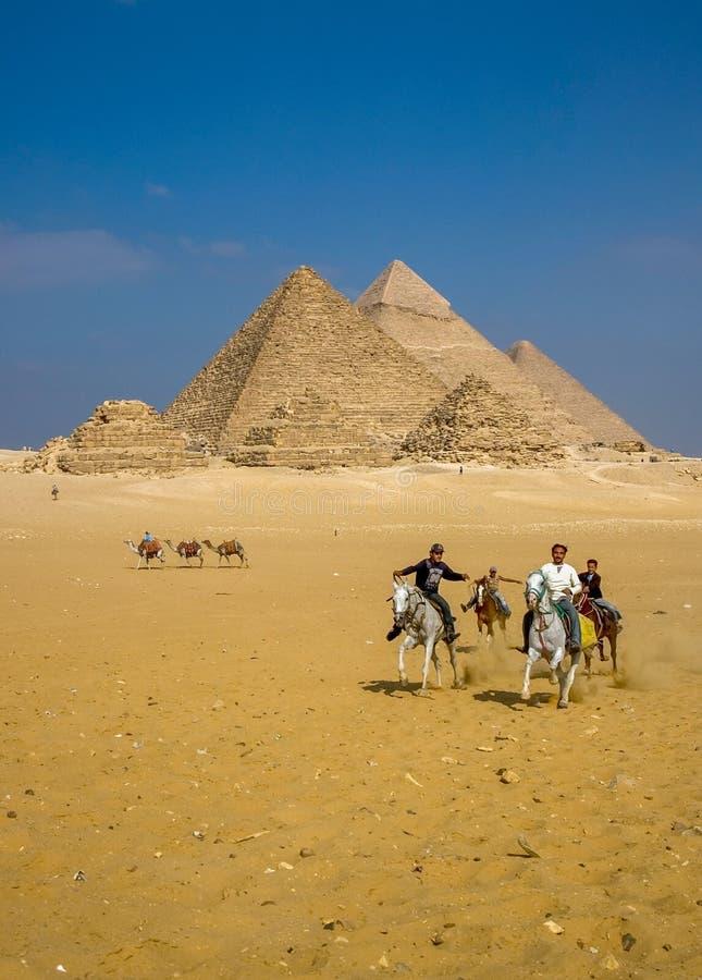 Uomini sui cavalli alle piramidi Giza immagini stock