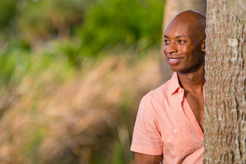 Uomo afroamericano bello del ritratto che posa da dietro un albero nel parco L'uomo è sorridente e dante un'occhiata fuori dalla  fotografia stock