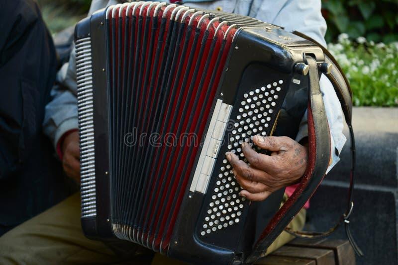 Uomo alla via che gioca fisarmonica fotografia stock libera da diritti