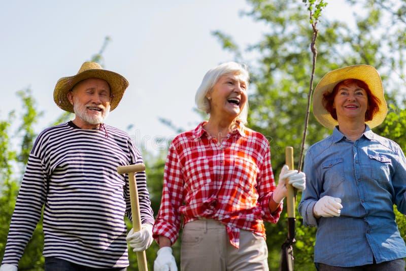 Uomo allegro e positivo e donne che si dirigono per piantare gli alberi fotografia stock