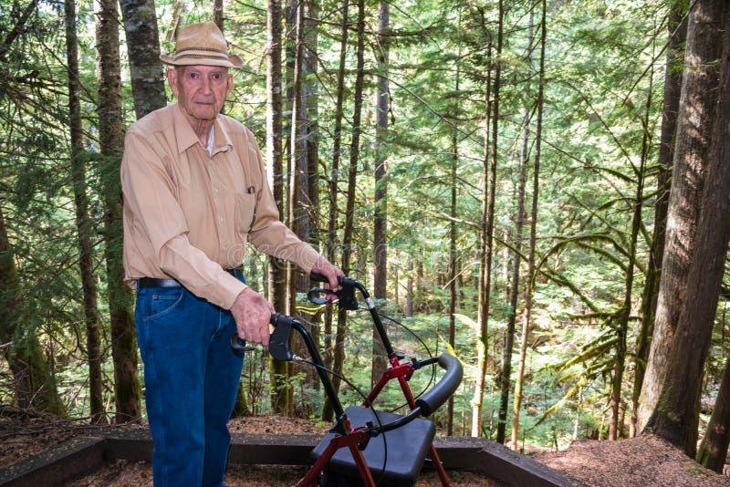 Uomo anziano attivo con il camminatore in foresta immagini stock