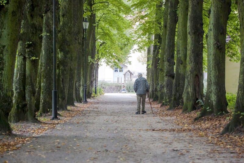 Uomo anziano che cammina da solo nel parco fotografia stock libera da diritti
