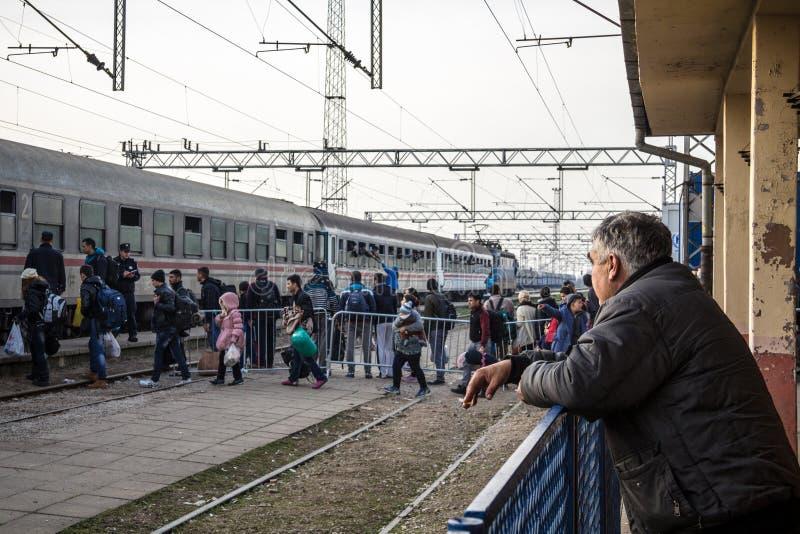 Uomo anziano che esamina un gruppo di rifugiati che si imbarcano su un treno per attraversare il confine della Croazia Serbia fotografia stock libera da diritti