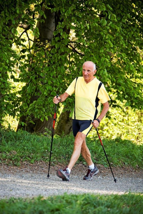 Uomo anziano con camminare nordico fotografia stock libera da diritti