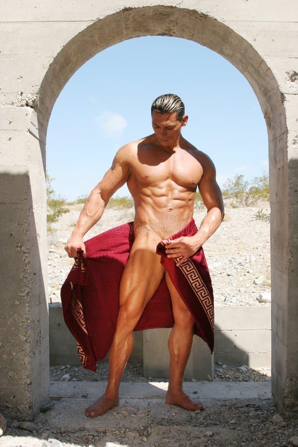 Uomo atletico sexy immagini stock libere da diritti