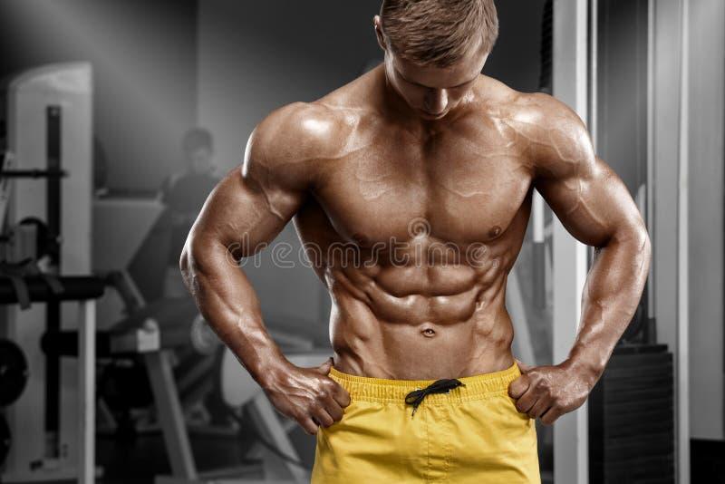 Uomo atletico sexy che mostra l'ABS del sixpack e dell'ente muscolare nella palestra Torso nacked forte maschio, risolvente immagini stock libere da diritti