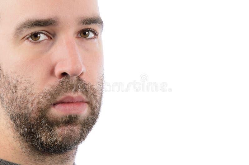 Uomo barbuto fotografia stock libera da diritti