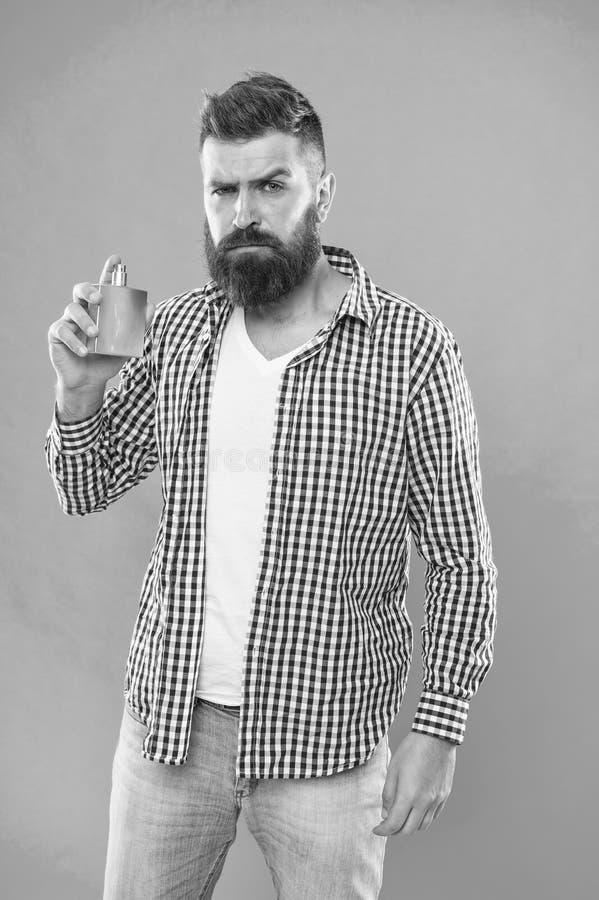 Uomo barbuto Capelli facciali e radersi Pantaloni a vita bassa caucasici brutali con i baffi Scelta del profumo Cura della barba  fotografie stock libere da diritti