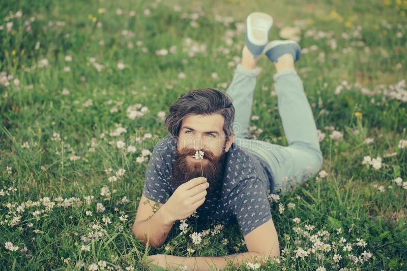 Uomo barbuto che mette su sorridere dell'erba verde immagine stock libera da diritti