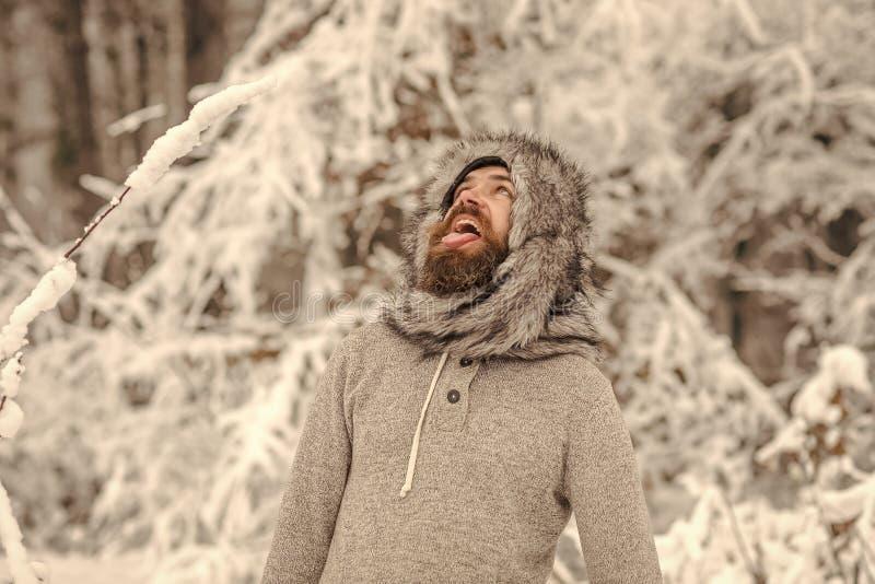Uomo barbuto con la bocca aperta in foresta nevosa fotografia stock libera da diritti