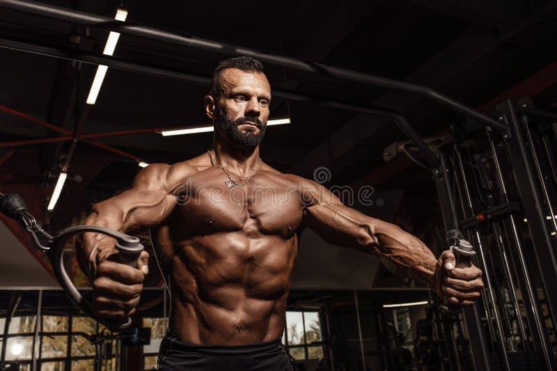 Uomo bello con i grandi muscoli che risolve nella palestra Culturista muscolare che fa gli esercizi immagine stock