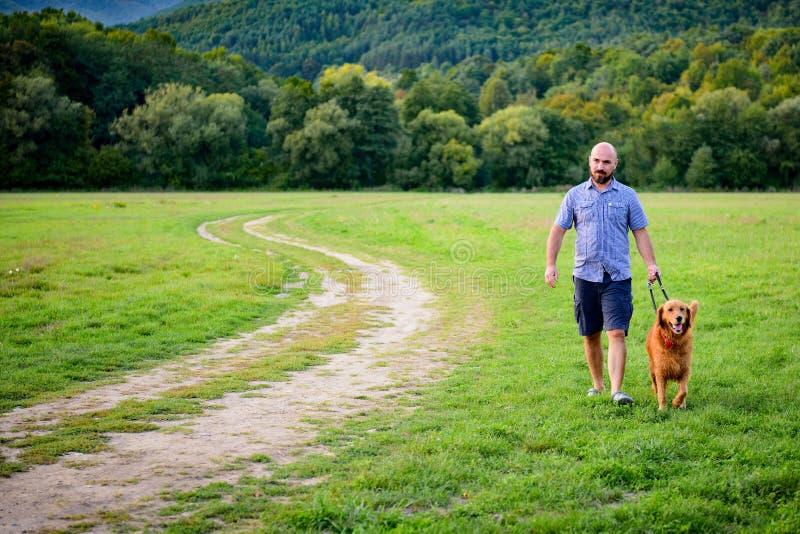 uomo bello dei pantaloni a vita bassa che prende il suo golden retriever del cane di animale domestico della famiglia per una pas fotografie stock
