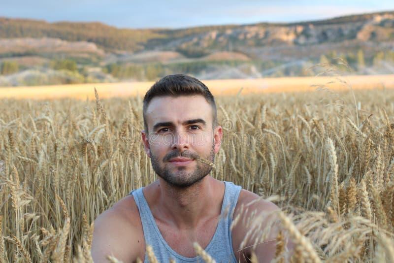 Uomo bello nel paesaggio soleggiato del giacimento di grano Bella stagione estiva, luce vaga calda di tramonto sopra il giaciment fotografie stock
